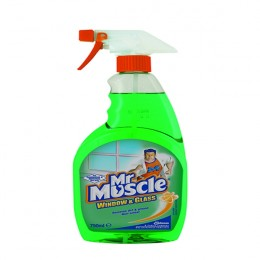 Mr Muscle Window and Glass Cleaner 750ml