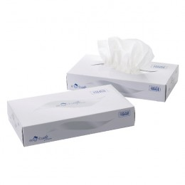 2-Ply White Facial Tissues Mansize 240x275mm 100 Sheets [Pack of 24]