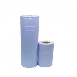 2Work Hygiene Roll Blue 10 Inch [Pack of 24]
