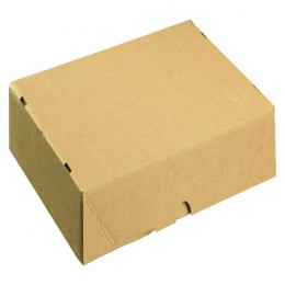 A4 Carton 305x215x50mm [Pack of 10]