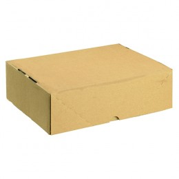 A4 Carton 305x215x100mm [Pack of 10]