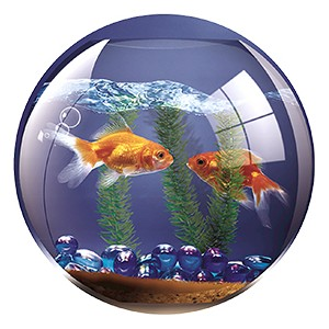 Fellowes Brite Goldfish Bowl Mouse Pad [Pack of 6]