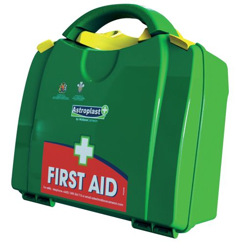 Wallace Cameron Green Box First Aid Kit for up to 10 People